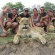 Our volunteers with a lioness