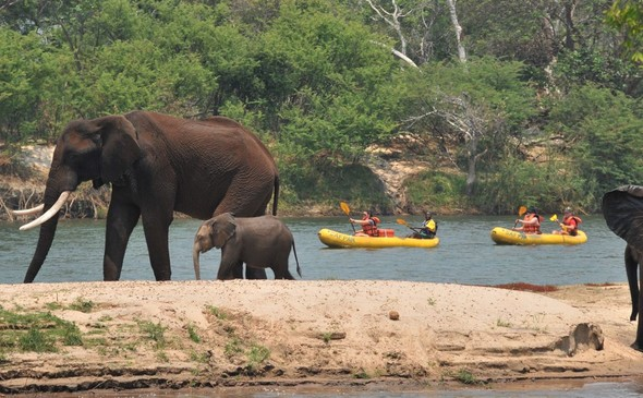 Safari Par Excellence - Canoeing