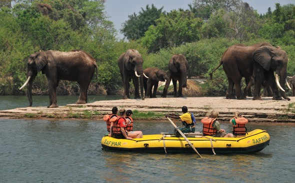 Safari Par Excellence - Upper River Raft Float
